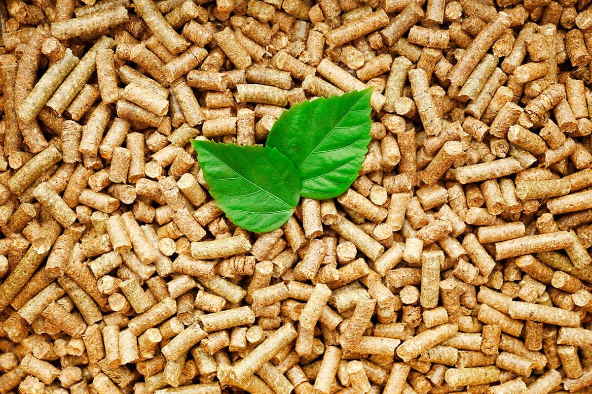 Biohot_Energia_quem_somos_biomassa